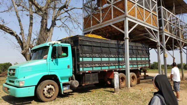 Hier werden Orangen verladen. (Foto: SMMP)